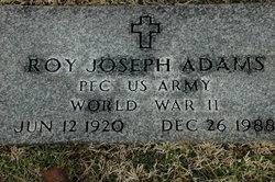 Roy Joseph Adams
