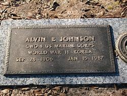 Alvin E. Johnson