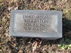 Emmit Arnold Wigginton