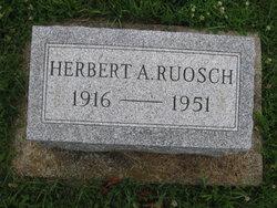Herbert A Ruosch