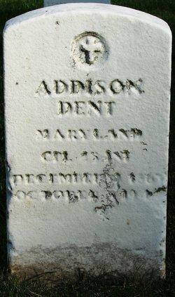 Addison Dent