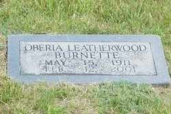 Oberia <i>Leatherwood</i> Burnette