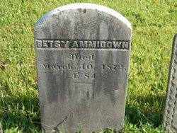Betsy <i>Barrett</i> Ammidown