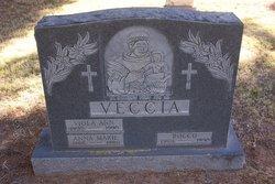 Viola Ann Veccia