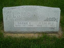 Darcus Elvada Darkie <i>Hicks</i> Alsup