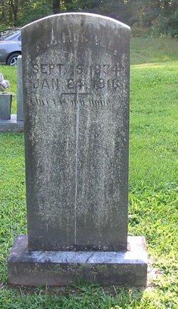 Andrew Jackson McCall