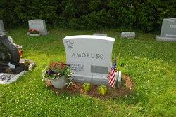 Michael J Amoruso