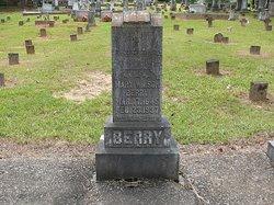Mary Ann Mollie <i>Wilson</i> Berry