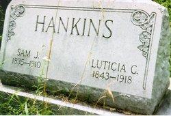 Sam J. Hankins