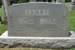 Ailcy Matilda <i>Sparrow</i> Ashby