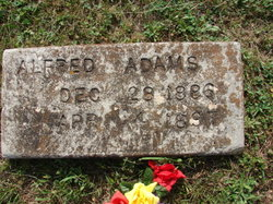 Alfred Adams