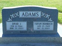 David J Adams