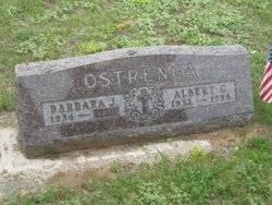 Albert G. George Ostrenga