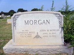 Sophronia <i>Ross</i> Morgan
