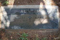 Minnie Agnes <i>Null</i> Allison