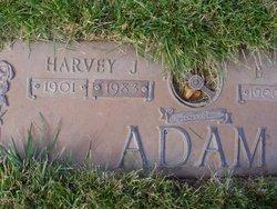 Harvey John Adam