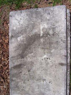 Elizabeth S <i>Vaughan</i> Sullivan