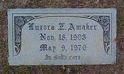Luxora <i>Zeigler</i> Amaker