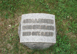 Anna E Barnes