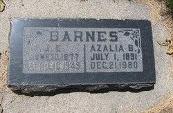 Joseph Ernest Barnes