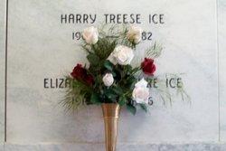 Harry Treese Ice