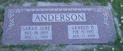 Sarah Jane <i>Jones</i> Anderson