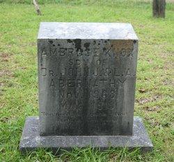 Ambrose Knox Abernathy