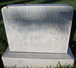 Eleanor J. Carpenter