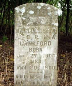 Martin T. Lankford