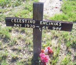 Celestino Encinias