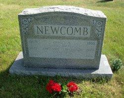 Daniel W Newcomb