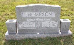 Joe W Thompson