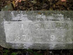 T. M. Callihan