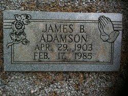 James Burl Adamson