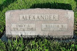 Emily J Alexander