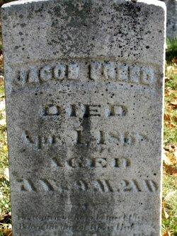 Jacob Freed, Jr