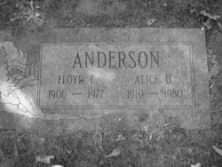 Alice D Anderson