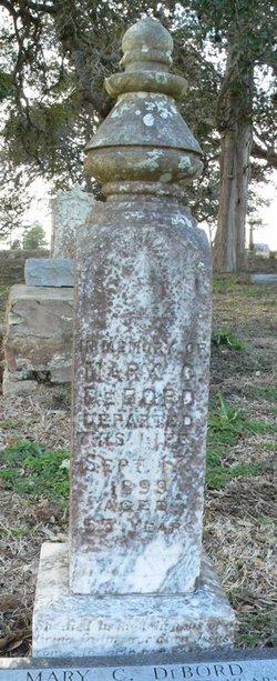 Mary C <i>Long</i> DeBord