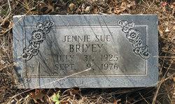 Jennie Sue <i>Palmer</i> Brixey