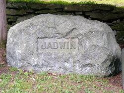 Cornelius Comegys Jadwin