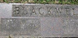 Albert J. Blackwell