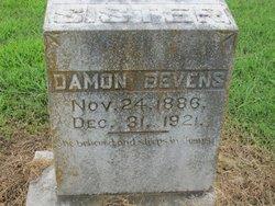 Damon Bevens