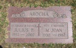 Mary Joan <i>McCue</i> Arocha