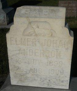 Elmer Johan Anderson
