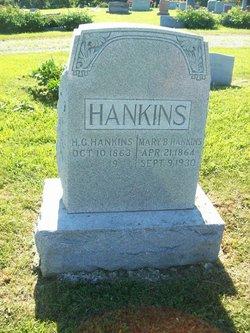 Harvey G Hankins