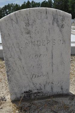 Ann Jane <i>Dasher</i> Anderson