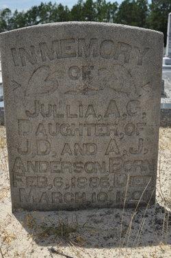 Julia Ann Anderson