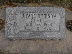 Wayne Ramsay Cluff