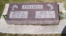 Duane Arnold Coleman