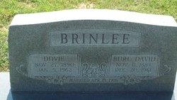 Maggie Ann Dovie <i>Whitaker</i> Brinlee